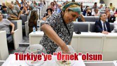 """Türkiye'ye """"Örnek""""olsun"""
