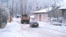 İzmir'in Ödemiş ilçesinde kar yağışı etkili oldu.