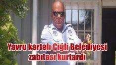 Yavru kartalı Çiğli Belediyesi zabıtası kurtardı