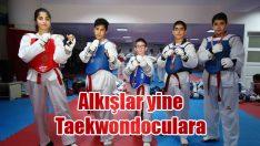 Alkışlar yine Taekwondoculara!